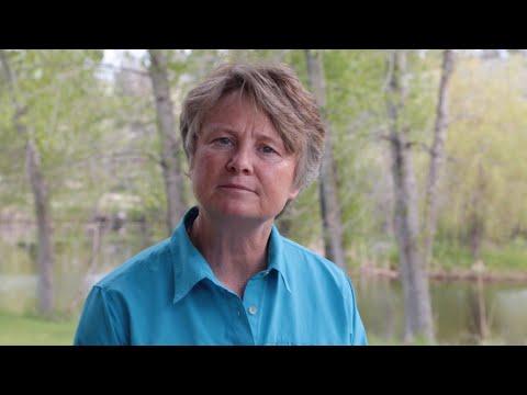 """Eine kurze Dokumentation über """"Biomimikry"""""""