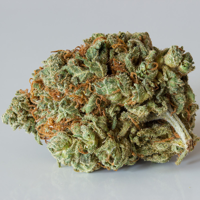Buy the strain Sour Tangie here