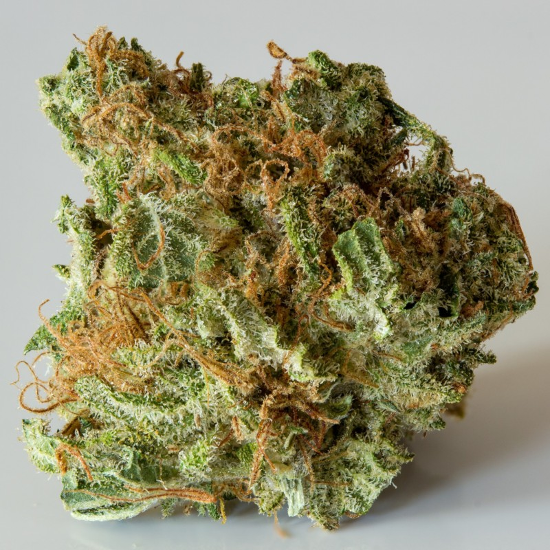 Buy the strain Blueberry here