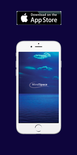 APPLE mindspace app