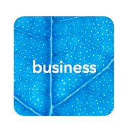 mindful business training