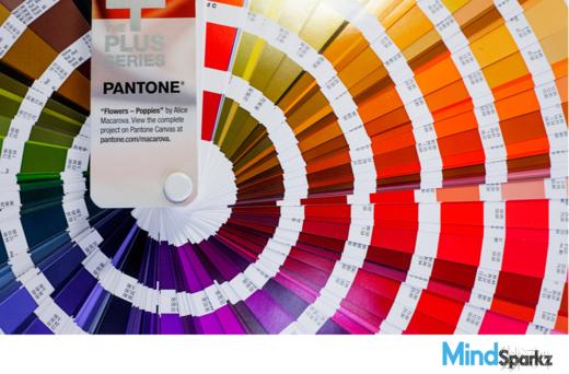 pantone colour system
