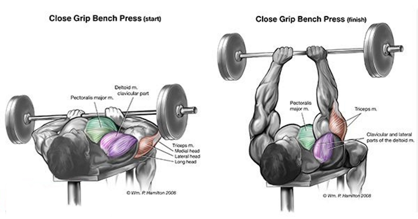 exercise tutorial how to do close grip crush grip dumbbell bench press to build the inner chest html 4
