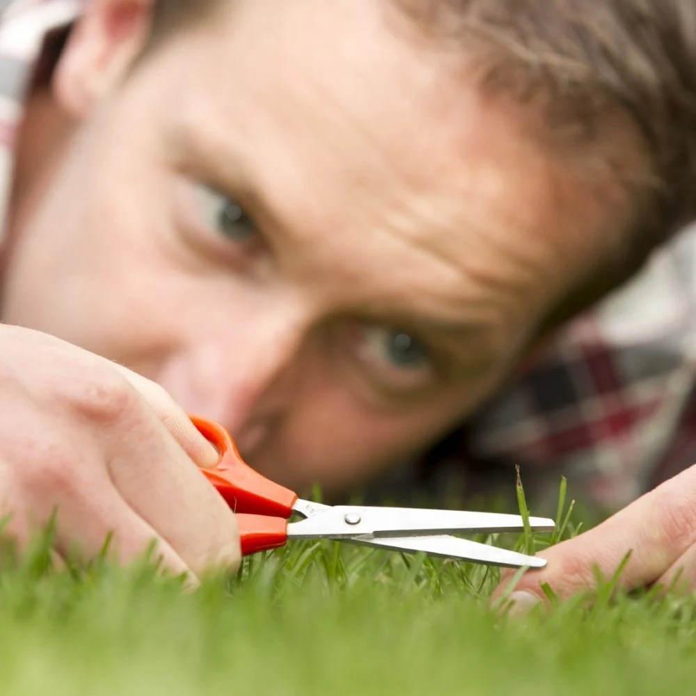 Managing Perfectionists Team Management Skills From