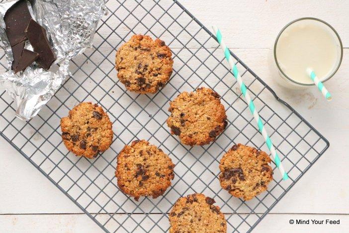 havermout koekjes pindakaas en chocola (1)