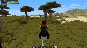 Birds Mod for Minecraft 1.8 and 1.8.9
