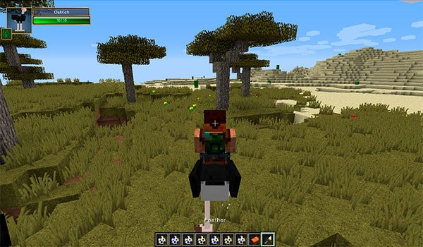 Birds Mod for Minecraft 1.8