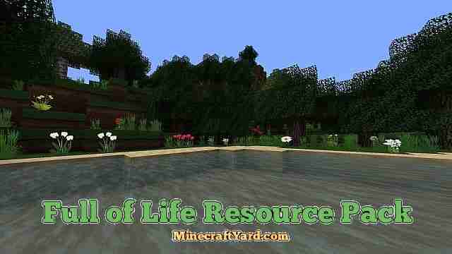 Full of Life Hd Resource Pack 1.16.3/1.15.2