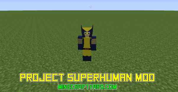 Project Superhuman 1.16.5/1.15.2