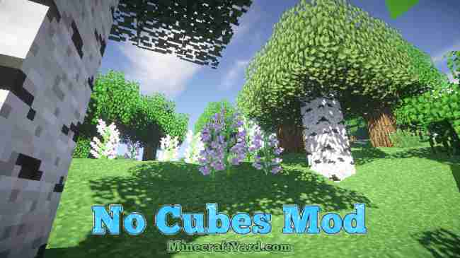 No Cubes Mod 1.16.3/1.15.2