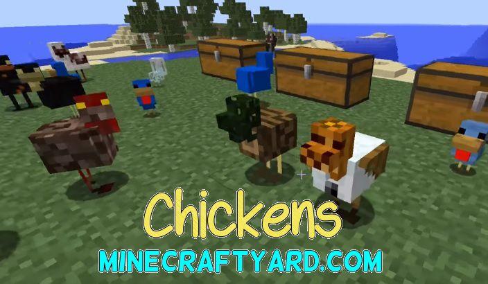 Chickens Mod 1.14.3/1.13.2/1.12.2/1.11.2