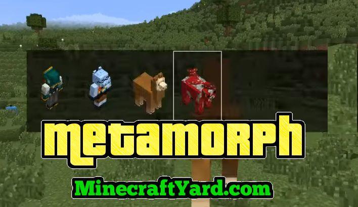 Metamorph Mod 1.14.3/1.13.2/1.12.2/1.11.2