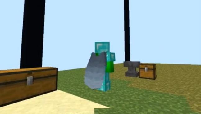 Colytra Mod 11