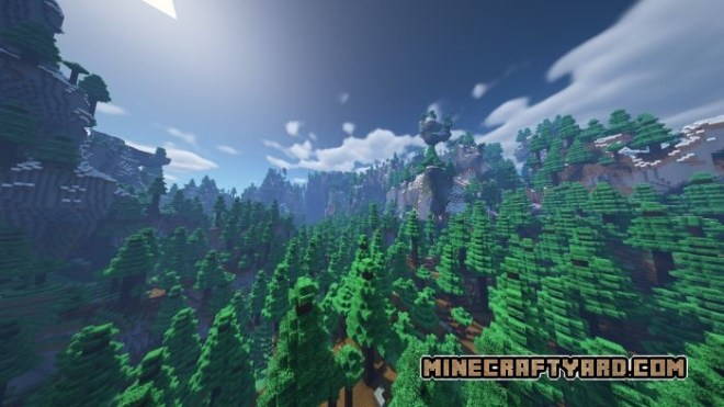 Amplified Forest