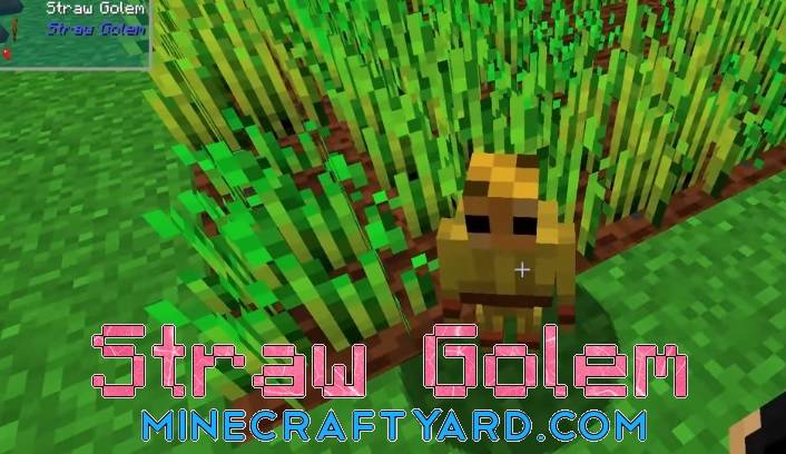 Straw Golem Reborn 1.16.4/1.15.2