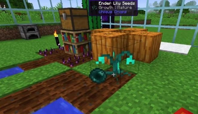 Unique Crops ender lilly