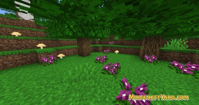 Better Default Biomes 5