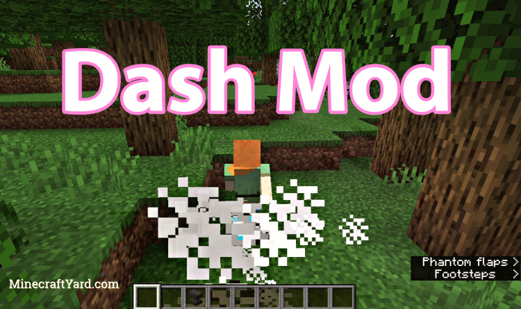 Dash Mod 1.16.5