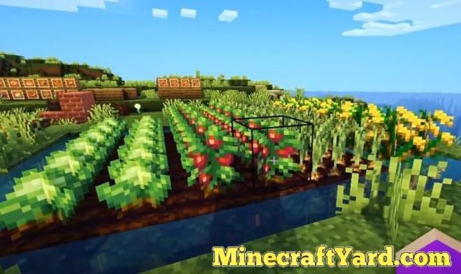 Farmer's Delight 10
