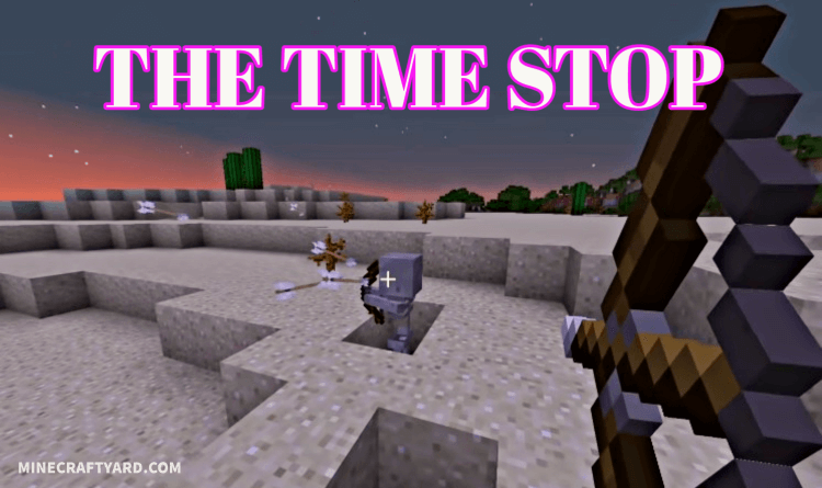 The Time Stop Mod 1.16.5