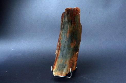 fosil mamutove kljove