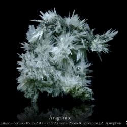 Aragonite XX Leštane Serbia 05_05_2017 25x23 mm Min