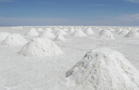 Australiana busca comprar proyectos en salares para explotar litio