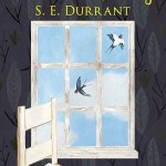 Little Bits of Sky by S E Durrant