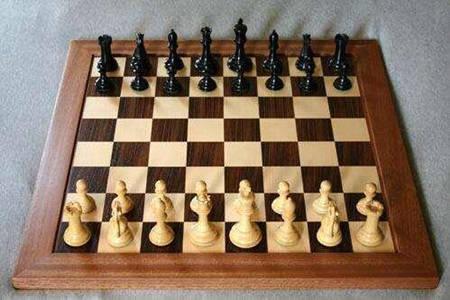 國際象棋的玩法簡介(二) 棋子相關規則