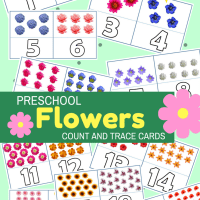 Preschool Flowers Count And Trace Flash Cards 1-20