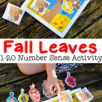Fall Leaves Number Sense Activity 1 to 20 for Preschool and Kindergarten Free Printable