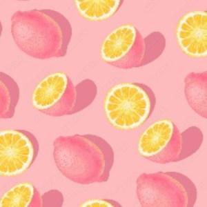 French terry - Lemon Pink Bio