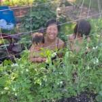 Let's Talk Gardening With Megan Brakeley