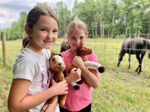Go For A Walk on New Morgan Horse Farm Trails