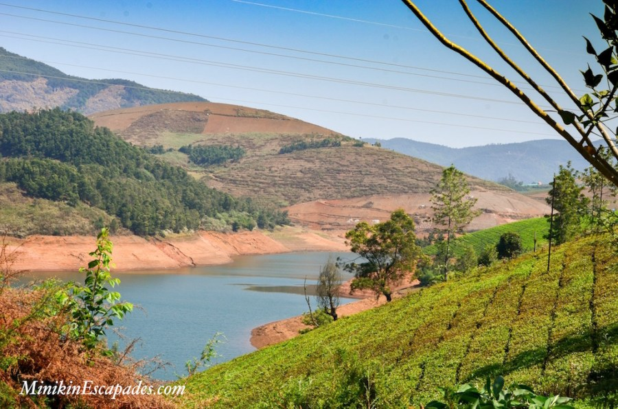 Avalanche lake Ooty, a must do