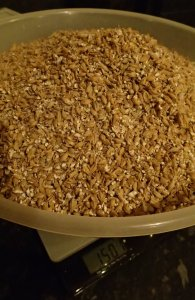 1.5kg of Pale Malt grains ready to mash into an APA
