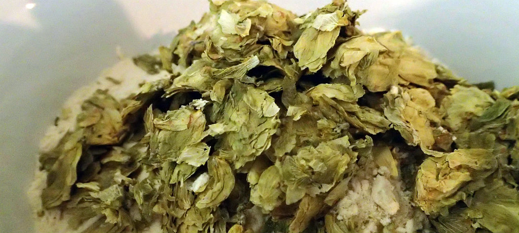 Marynka hops with light spraymalt