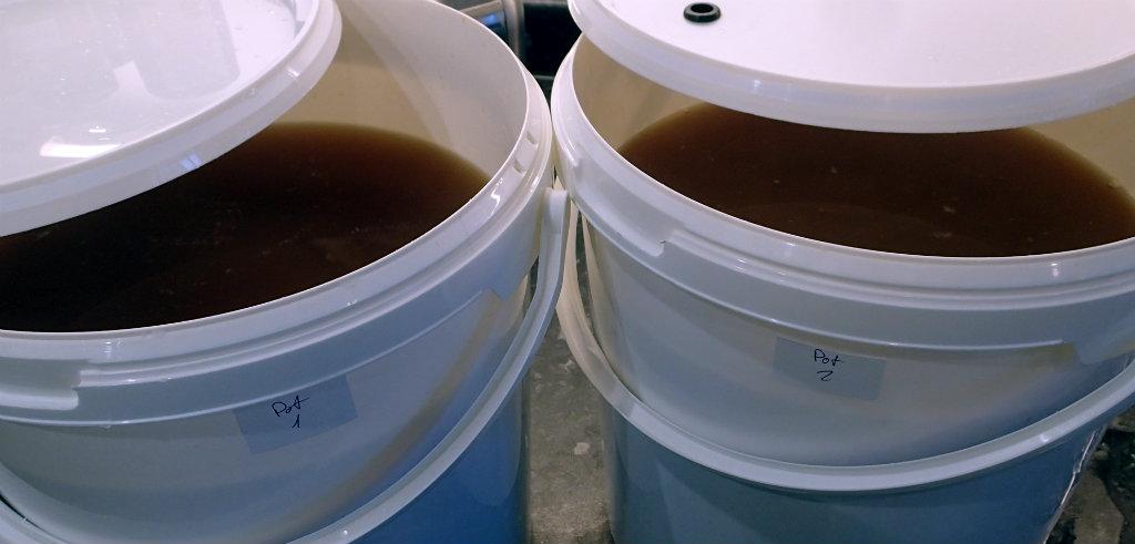 Ready for fermentation