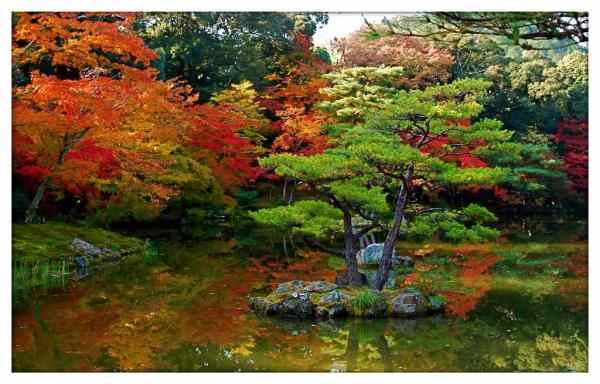 traditional japanese garden design Traditional Japanese garden design ideas