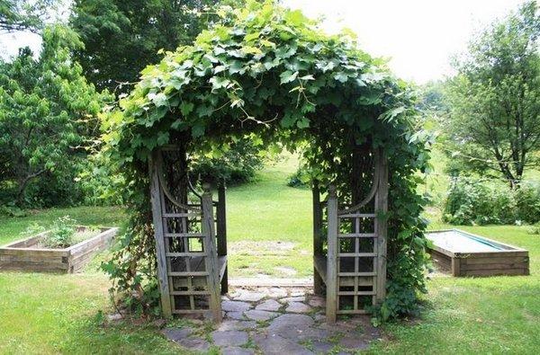 30 fascinating grape arbor ideas - the perfect patio decor on Vine Decor Ideas  id=65944