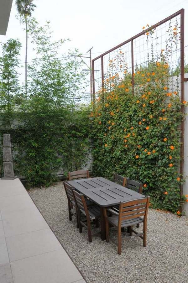 Privacy fence screen ideas for the garden and patio area ... on Decorations For Privacy Fence id=33278
