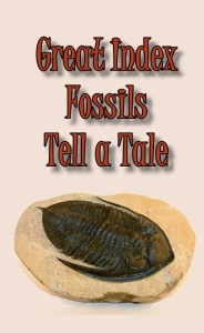 Index Fossils tell Tale