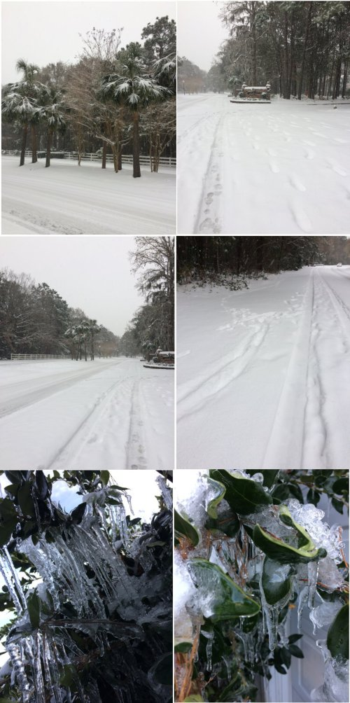 Snow 2018 Mt Pleasant South Carolina