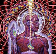 "Tool ""Lateralus"""