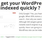 How to show post excerpt in wordpress?