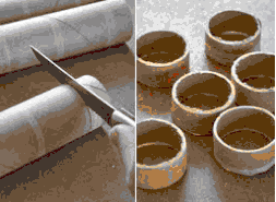 toiletpaperrolls1