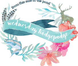 Wednesday Hodgepodge Vol. 304