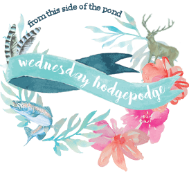 Wednesday Hodgepodge Vol. 355 | Mini Van Dreams