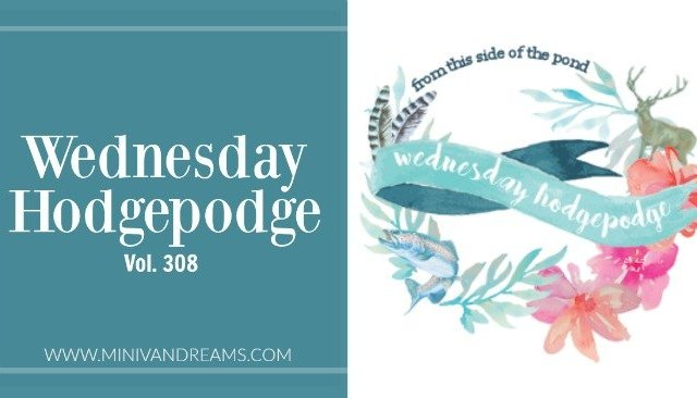 Wednesday Hodgepodge Vol. 308 | Mini Van Dreams