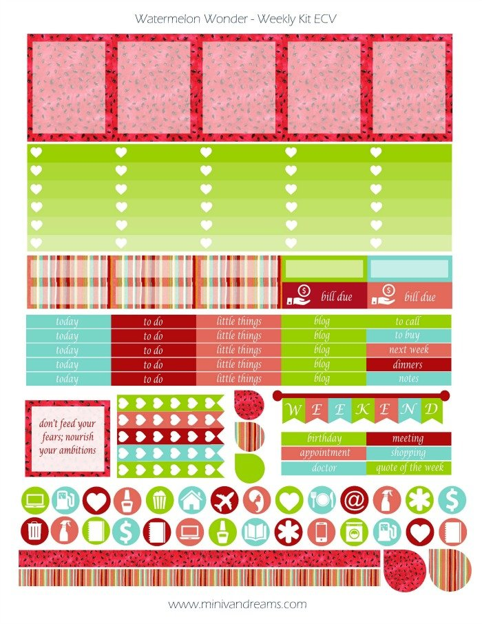 Free Printable Planner Stickers - Watermelon Wonder